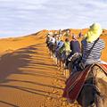 Orient Kreuzfahrt ab Dubai inklusive Flüge